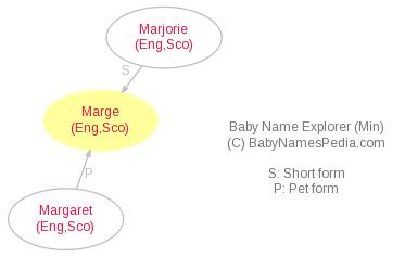 Baby Name Explorer for Marge