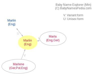 Baby Name Explorer for Marlin