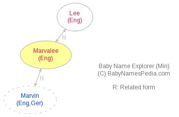 Baby Name Explorer for Marvalee