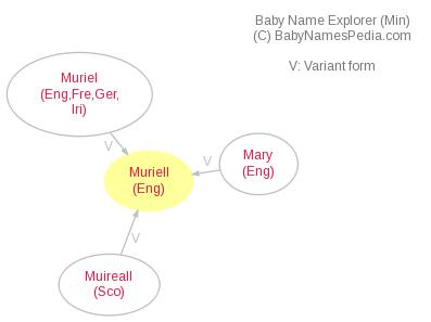 Baby Name Explorer for Muriell