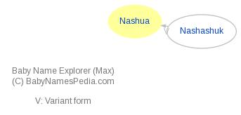 Baby Name Explorer for Nashua