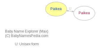 Baby Name Explorer for Paikea