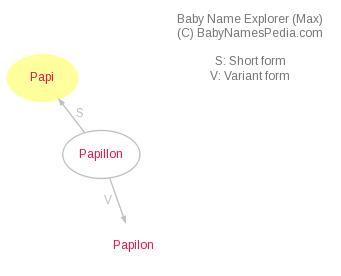 Baby Name Explorer for Papi