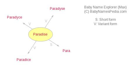 Baby Name Explorer for Paradise