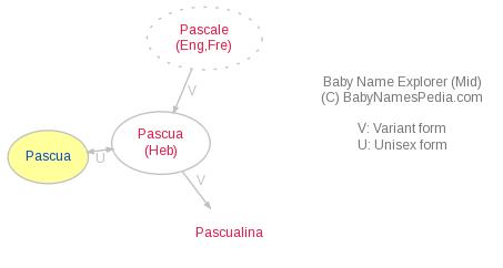 Baby Name Explorer for Pascua