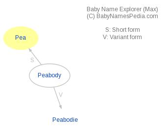 Baby Name Explorer for Pea