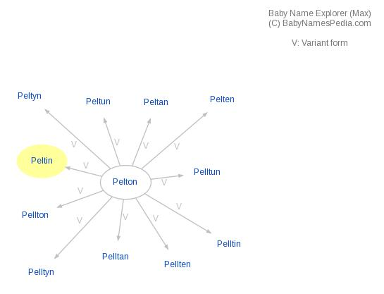 Baby Name Explorer for Peltin