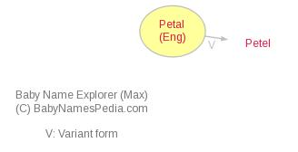 Baby Name Explorer for Petal