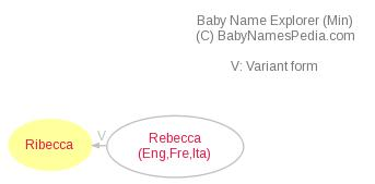 Baby Name Explorer for Ribecca