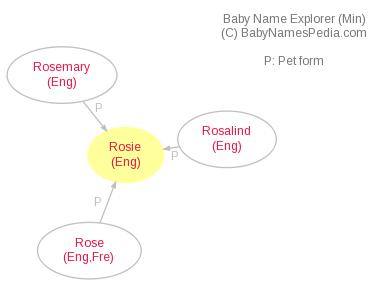 Baby Name Explorer for Rosie