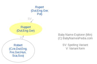 Baby Name Explorer for Ruppert