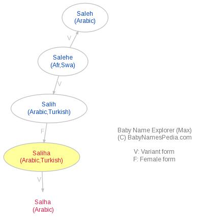 Baby Name Explorer for Saliha