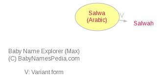 Baby Name Explorer for Salwa