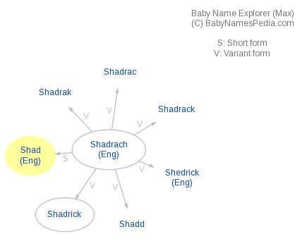 Baby Name Explorer for Shad