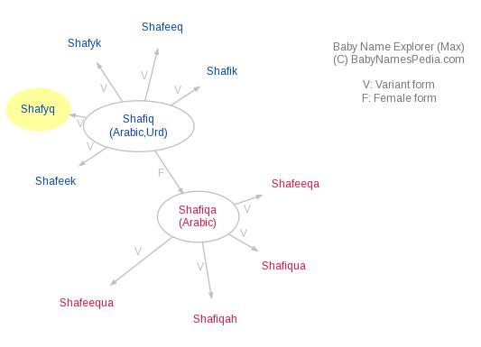 Baby Name Explorer for Shafyq