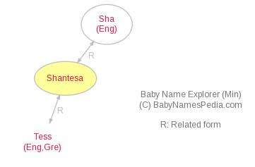 Baby Name Explorer for Shantesa