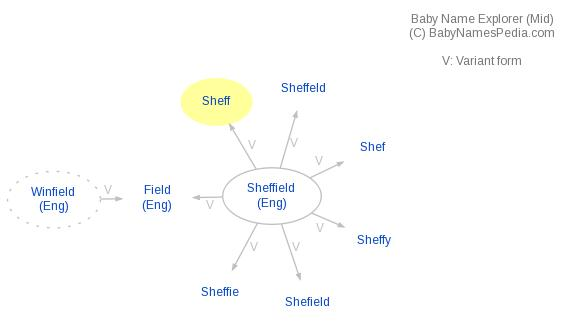 Baby Name Explorer for Sheff