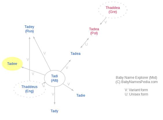 Baby Name Explorer for Tadee