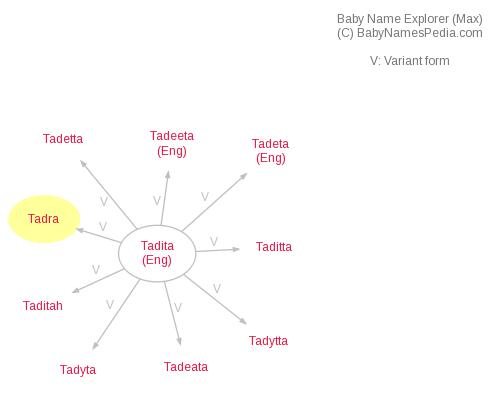 Baby Name Explorer for Tadra