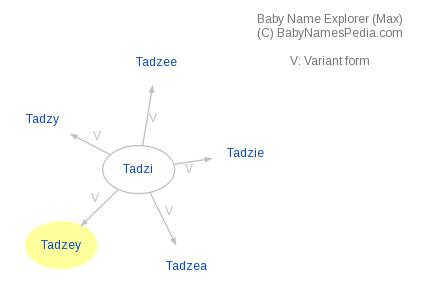 Baby Name Explorer for Tadzey