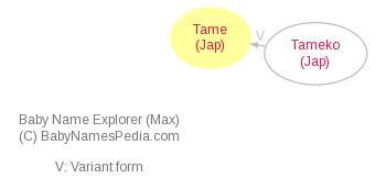 Baby Name Explorer for Tame