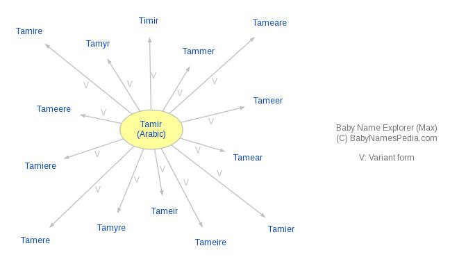 Baby Name Explorer for Tamir