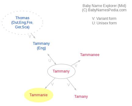 Baby Name Explorer for Tammanie