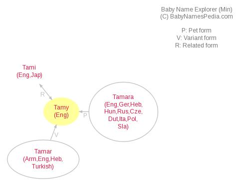 Baby Name Explorer for Tamy