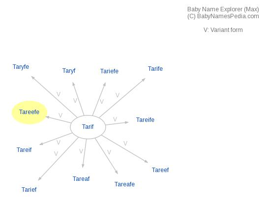 Baby Name Explorer for Tareefe