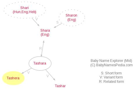 Baby Name Explorer for Tashera