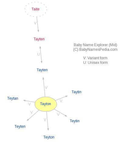 Baby Name Explorer for Tayton