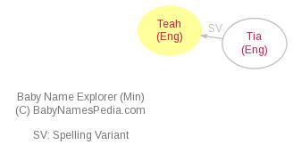 Baby Name Explorer for Teah