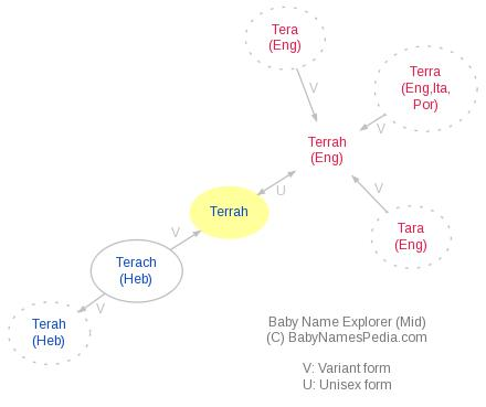 Baby Name Explorer for Terrah