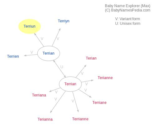 Terriun meaning of terriun what does terriun mean for Terris meaning