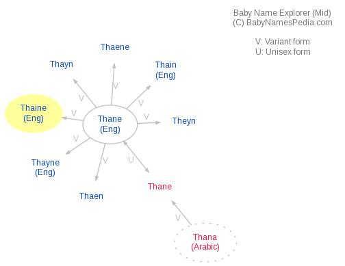 Baby Name Explorer for Thaine