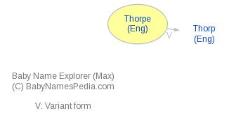 Baby Name Explorer for Thorpe