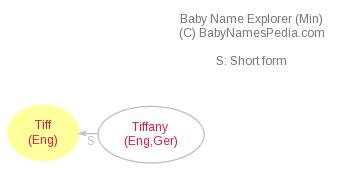 Baby Name Explorer for Tiff