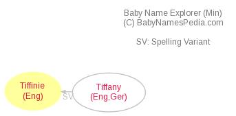 Baby Name Explorer for Tiffinie