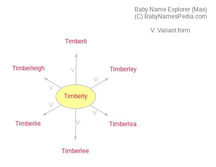 Baby Name Explorer for Timberly