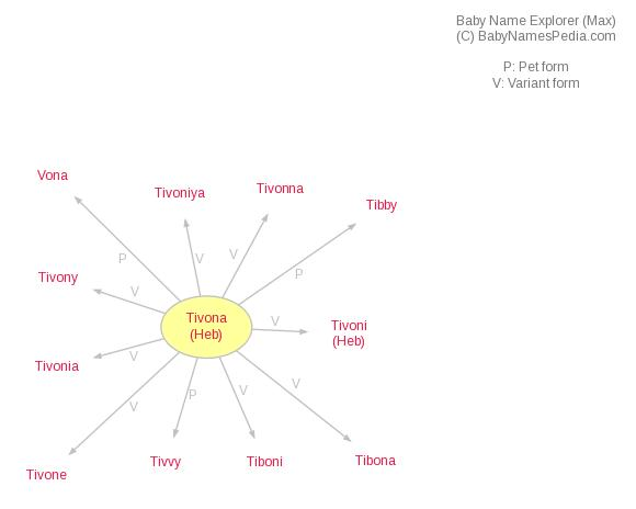 Baby Name Explorer for Tivona