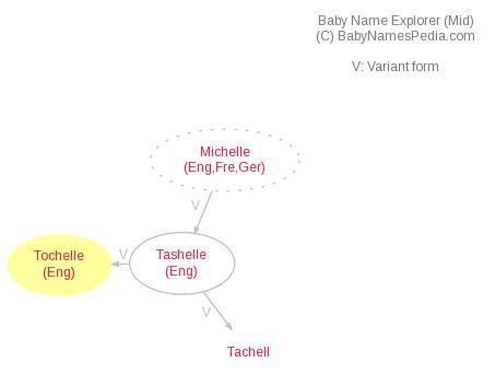 Baby Name Explorer for Tochelle
