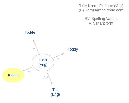 Baby Name Explorer for Toddie