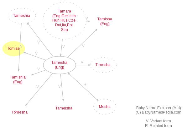 Baby Name Explorer for Tomise
