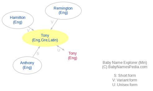 Baby Name Explorer for Tony
