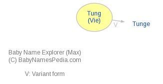Baby Name Explorer for Tung