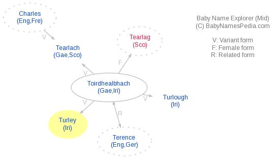 Baby Name Explorer for Turley
