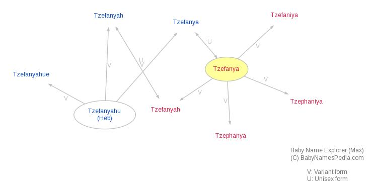 Baby Name Explorer for Tzefanya
