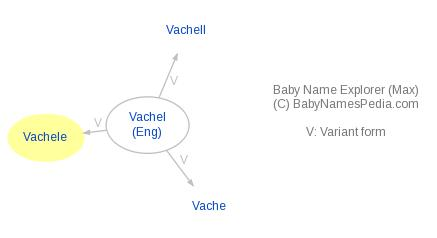 Baby Name Explorer for Vachele