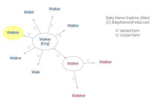 Baby Name Explorer for Wakker