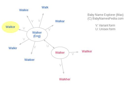 Baby Name Explorer for Walkor